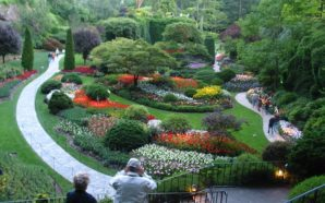 Idées de destinations: cap sur les plus beaux jardins du…